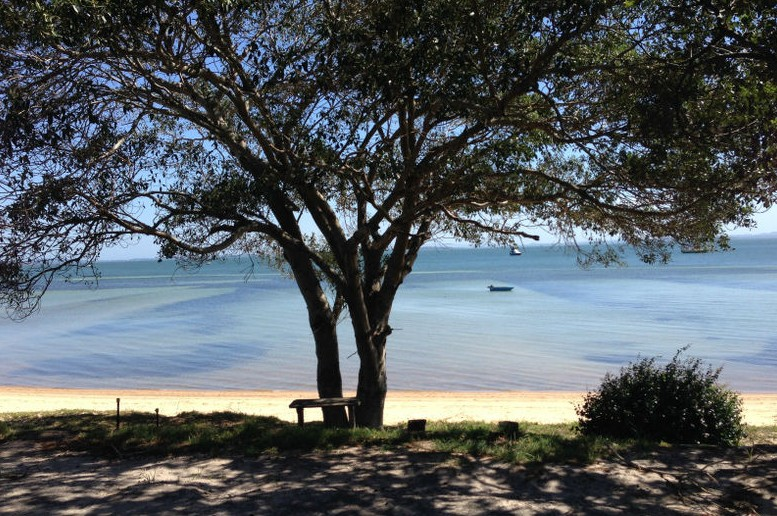 Adams Beach Camping Ground - QLD Tourism