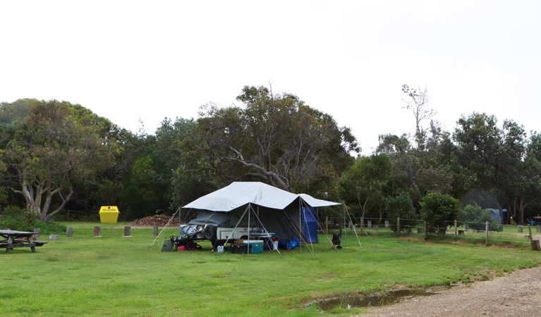 Illaroo campground - QLD Tourism
