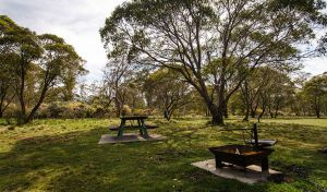 Little Murray campground - QLD Tourism