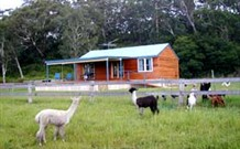 Moorallie Cottage Farm Stay - QLD Tourism