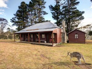 The Pines Cottage - QLD Tourism