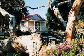 Cape Jervis Holiday Units - QLD Tourism