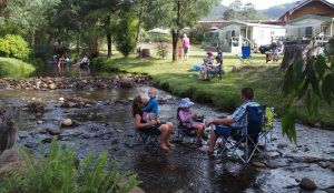 Marysville Caravan and Holiday Park - QLD Tourism