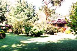 Boronia Holiday Lodge - QLD Tourism