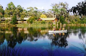 Kianinny Bush Cottages - QLD Tourism