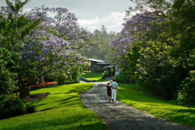Lily Pily Country House - QLD Tourism