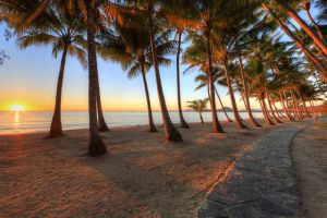 Palm Cove Holiday Park - QLD Tourism