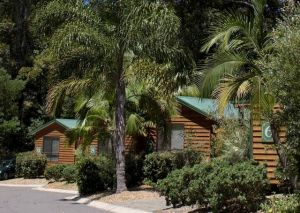 The Palms at Avoca - QLD Tourism