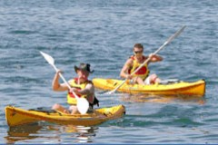 Manly Kayaks - QLD Tourism