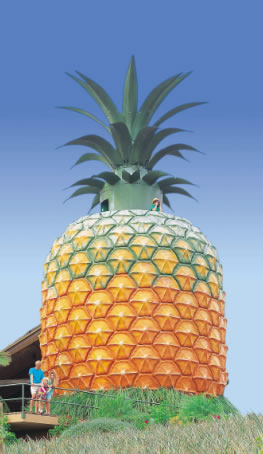 The Big Pineapple - QLD Tourism