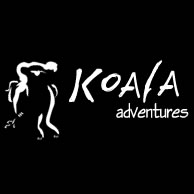Koala Adventures - QLD Tourism