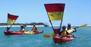 Kayak Noosa - QLD Tourism