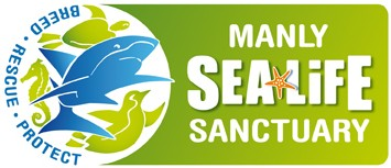 Manly SEA LIFE Sanctuary - QLD Tourism