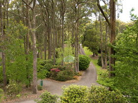 Mount Lofty Botanic Garden - QLD Tourism