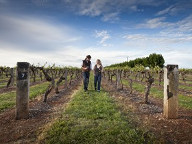Coonawarra Wineries Walking Trail - QLD Tourism