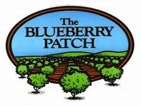 The Blueberry Patch - QLD Tourism