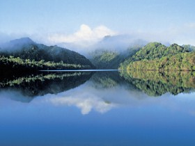 The Gordon River