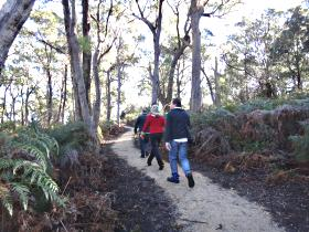 Bridport Walking Track - QLD Tourism