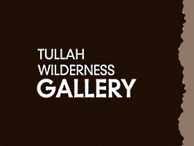 Tullah Wilderness Gallery - QLD Tourism