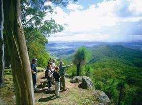 Gold Coast Hinterland Great Walk - QLD Tourism