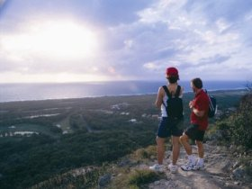 Mount Coolum National Park - QLD Tourism