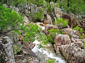 Crows Nest National Park - QLD Tourism