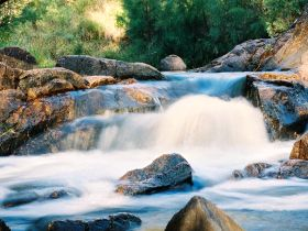 Crows Nest Falls - QLD Tourism