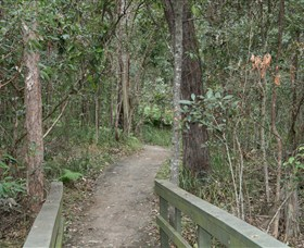 Springwood Conservation Park - QLD Tourism