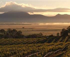 Montara Wines - QLD Tourism
