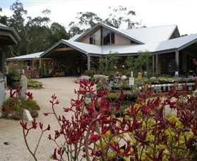 Kuranga Native Nursery and Paperbark Cafe - QLD Tourism