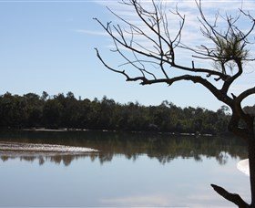 North Coast Holiday Parks Boambee Creek Reserve - QLD Tourism