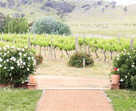 Brindabella Hills Winery - QLD Tourism