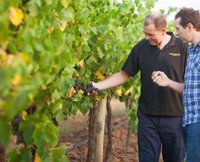 Fratin Brothers Vineyard - QLD Tourism