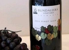 Bundaleera Vineyard - QLD Tourism