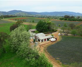 Schmidts Strawberry Winery - QLD Tourism