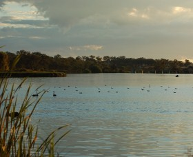 Lake Inverell Reserve - QLD Tourism