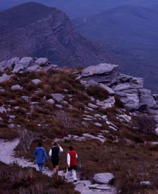 Bluff Knoll Stirling Range National Park