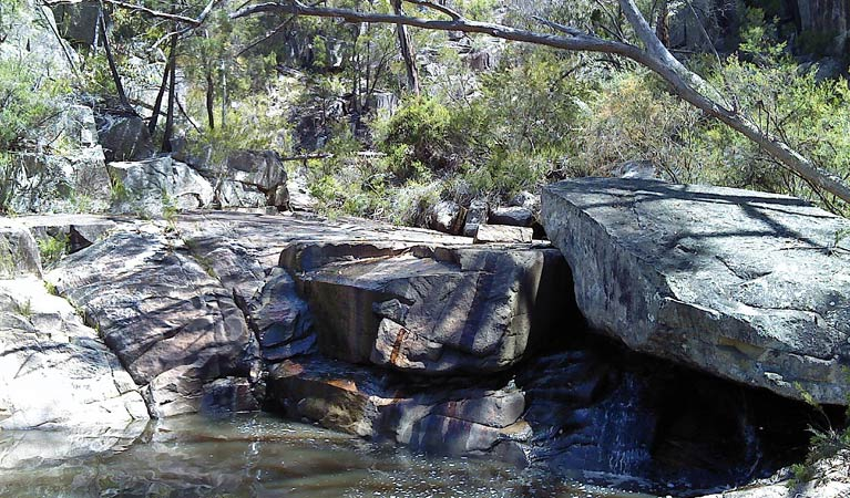 Torrington State Conservation Area - QLD Tourism
