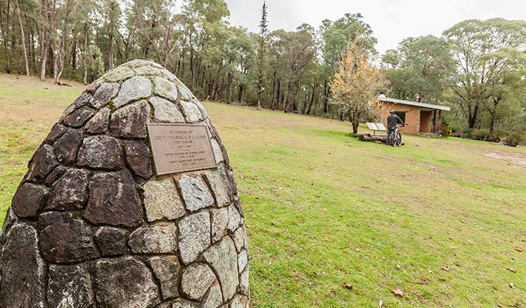 Major Clews Hut walking track - QLD Tourism