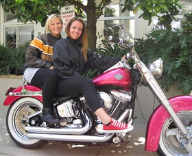 Wild Ride Harley and Motorcycle Tours - QLD Tourism