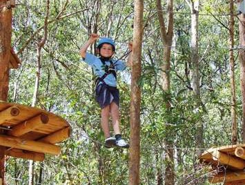TreeTops Newcastle - QLD Tourism