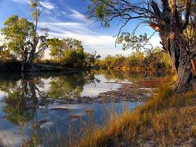 Murray River National Park