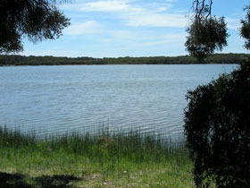 Lake Fellmongery Ski Lake - QLD Tourism