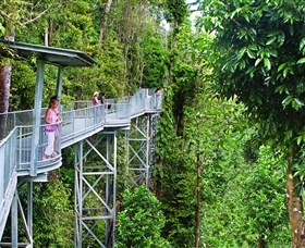 Mamu Tropical Skywalk - QLD Tourism