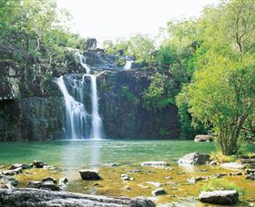 Cedar Creek Falls - QLD Tourism