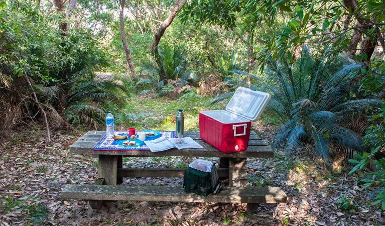 Little Llangothlin picnic area - QLD Tourism