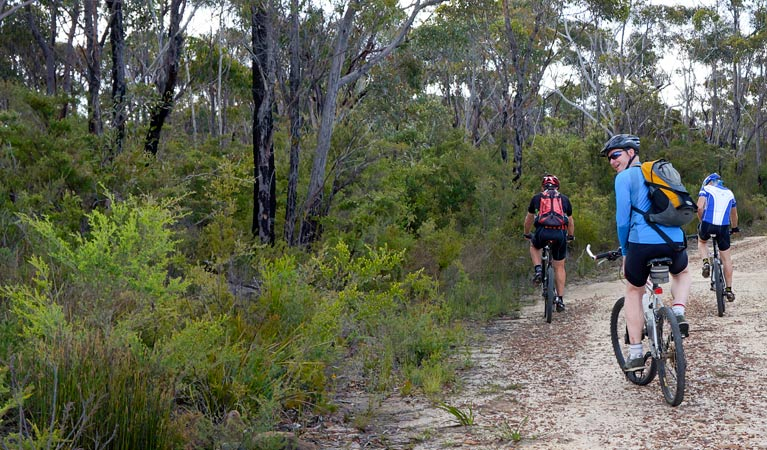 McMahon's Point ride - Wentworth Falls - QLD Tourism