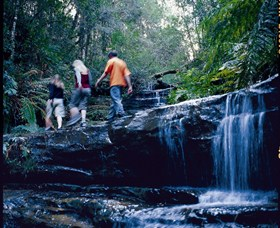 South Lawson Waterfall Circuit - QLD Tourism