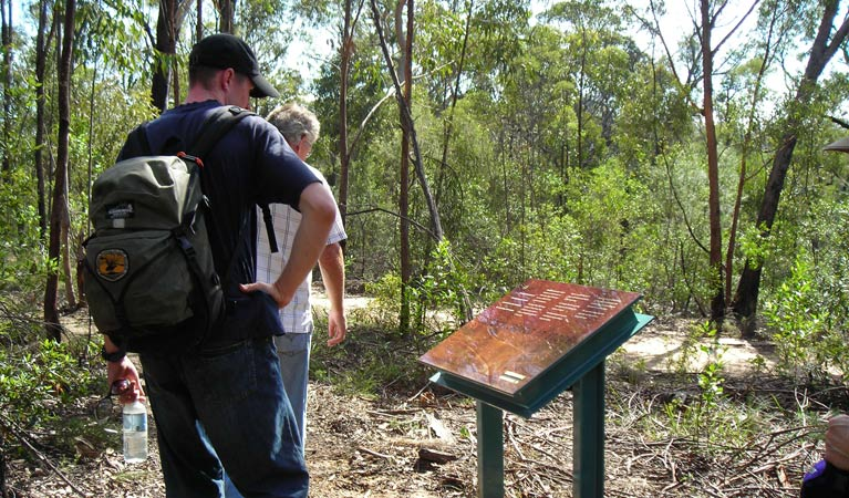 Finchley cultural walk - QLD Tourism
