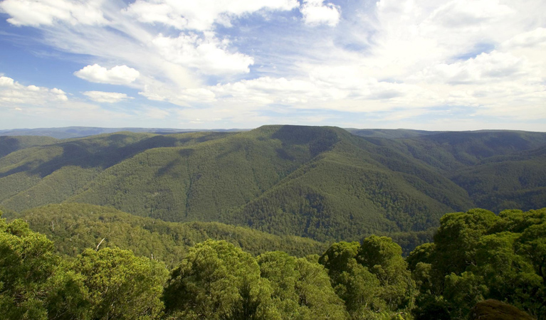 Barrington Tops National Park - QLD Tourism